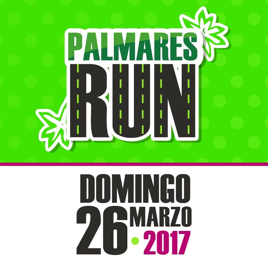 PERFIL CARRERA PALMARES RUN B-02