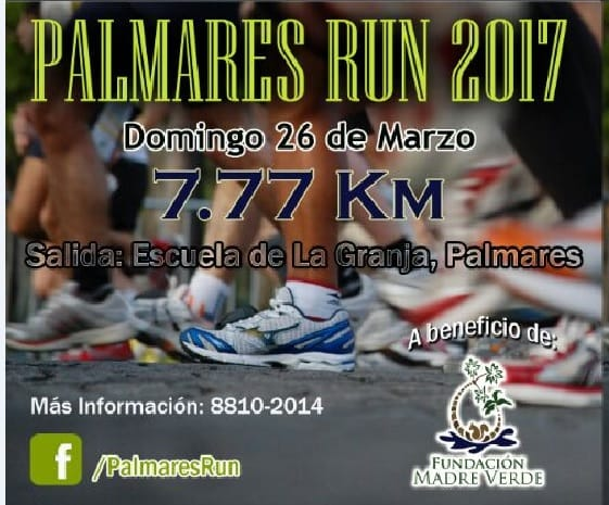 Palmares Run flyer solo